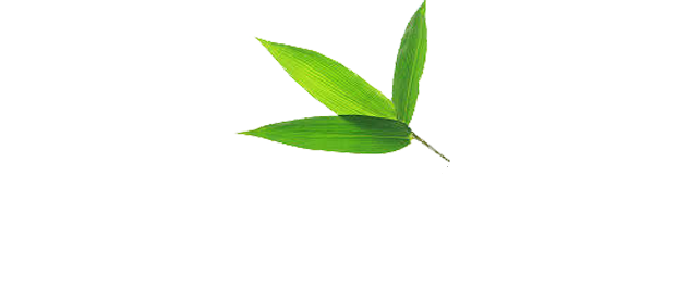 Bamboo-Health